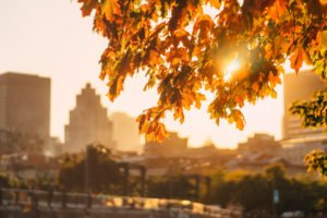 autumn in the city 300x200 - Fall Cleaning Tips for Businesses